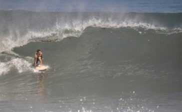 Surf en terre promise